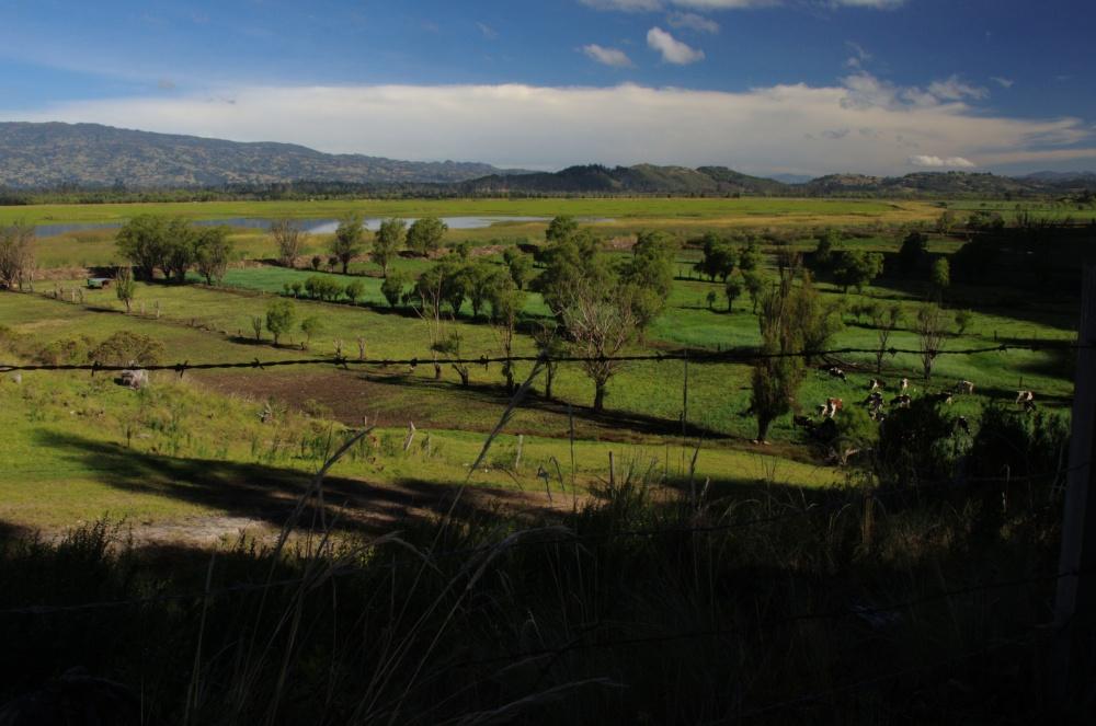 Laguna de Cucunubá, acercamiento 1