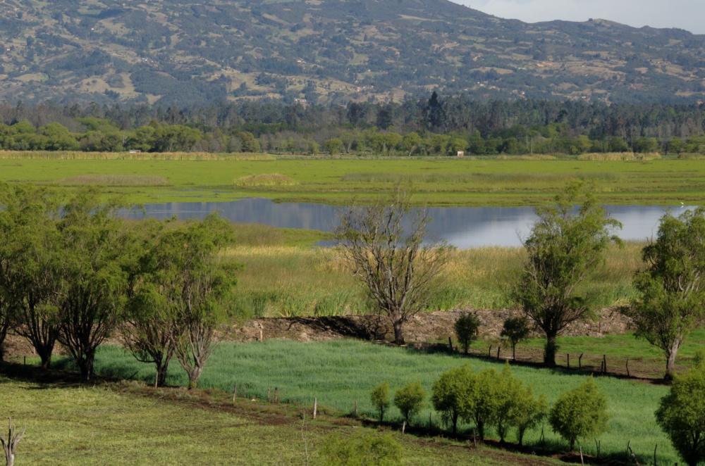 Dique en la laguna de Cucunubá