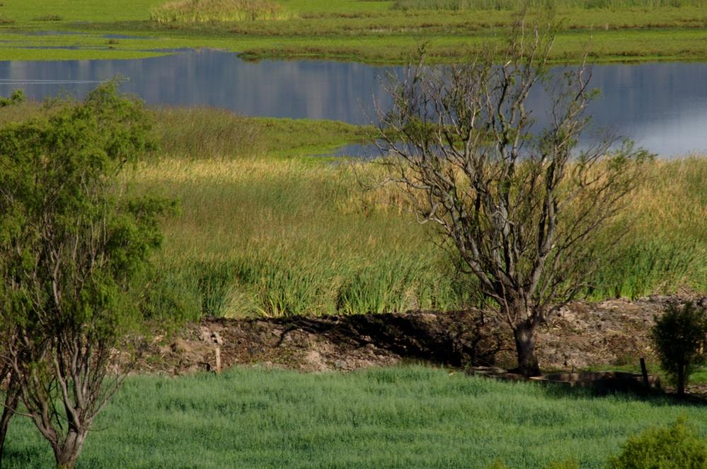 Dique en la laguna de Cucunubá, acercamiento